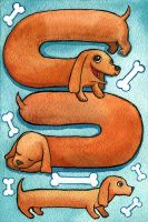 Doxie iPhone Background by miim