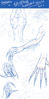 Balverine Anatomy Refs. 1 by Celestialess
