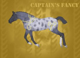 CHS Captain's Fancy by ReeseS8