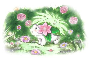 Shaymin by Nadou