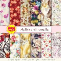 Vintage Floral Digital Paper 12 x 12 inch dsg018 by daisyanderson