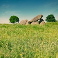 Giant's Ring with Buttercups by Gerard1972