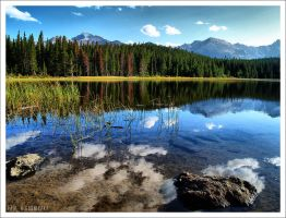 Bierstadt Lake by NitzkaPhotography