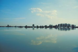 Nei riflessi contagiosi by tgphotographer