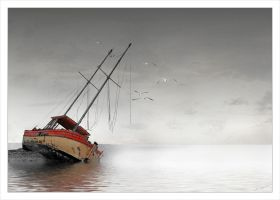 stranded by crotalo