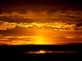 Golden Sunset by Dreamers-Scenery