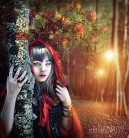 Girl in red by irinama