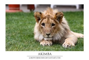 Akimba by AF--Photography