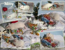 Merry Christmas And Happy New Year 2014 by Susiruhtinatar