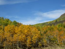 Steamboat Trip 10-10-14 4 by Collidoscope