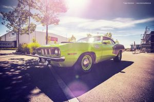 Cuda 440+6 by AmericanMuscle