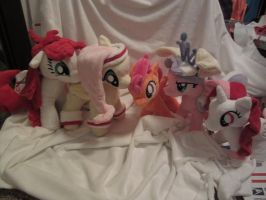My little pony plushies and OC's by Little-Broy-Peep