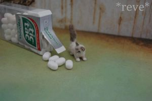 Miniature Kitty and Tic Tac by ReveMiniatures