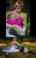 Zelda Twilight Princess preview by Dark-Uke
