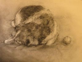 Charcoal Drawing: Tired Puppy by TzarinaRegina