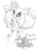 2Taild Smarty:Heartless Tails: by V1ciouzMizzAzn