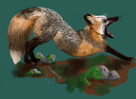 Fox Yawn by foxplant