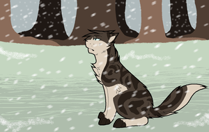 .:First Snow:. by meadowllark