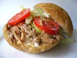 Pull Pork Sandwich II by acquiredflavor