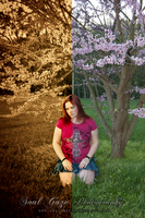 BeforeAfterAmberFlowers2010 by GothicAmethyst