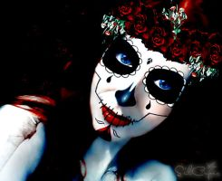 Day of the dead IX by silcuper