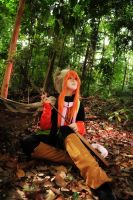 Lamento - The Wandering Poet 3 by rinabyakuran