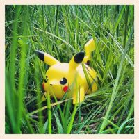 A wild Pikachu appeared by Eternal-Polaroid