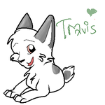 Travis by t3h-kittyness