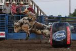 Bull Rider at WWD, Viroqua, WI 8/15/2015 7:02PM by Crigger