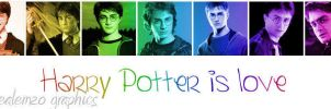 Harry Potter is love by etherealemzo