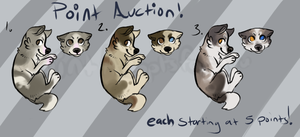 Dog adopts - auction - CLOSED - by PointAdoptsforyou