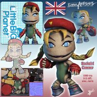 LBP style Cammy by HecM