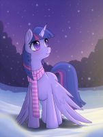Winter Night by Stalkerpony