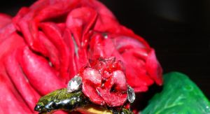 rose Ring. by Beauty-of-love