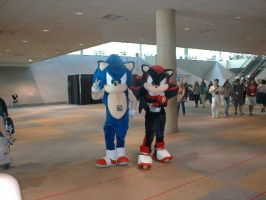 Sonic Cosplay by LagunaFlare