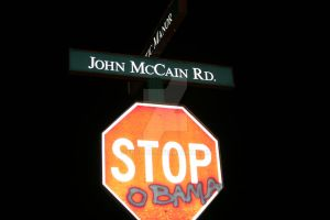 McCain vs Obama by Frolay