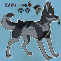 Kain Reference 2013 by Mekko-chan