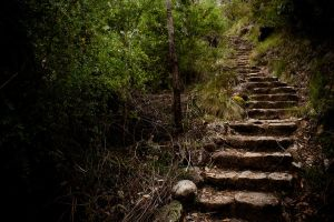 Stairway by raven9999