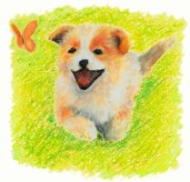 Puppy Chas by Jacia