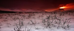 ICELAND - red sky on by PatiMakowska