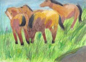 ponies in a meadow by singingcatartist12