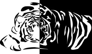 Tiger by Kemys