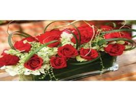 Online Florist World by CindyBell22