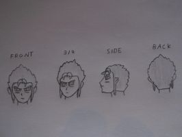 Dbz oc Shiso different head perspectives by sonicforever1998