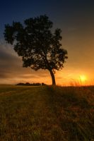 one tree hill V by theoden06