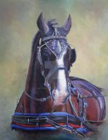Driving Horse - Oil by AtinaP