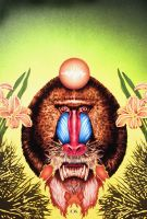 Mandrill by charlie45
