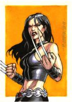 X-23 PSC by ryanorosco