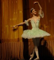 Svetlana in Don Quixote by myrtha