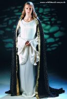 Eowyn Starry Mantle 5 by Lady--Eowyn